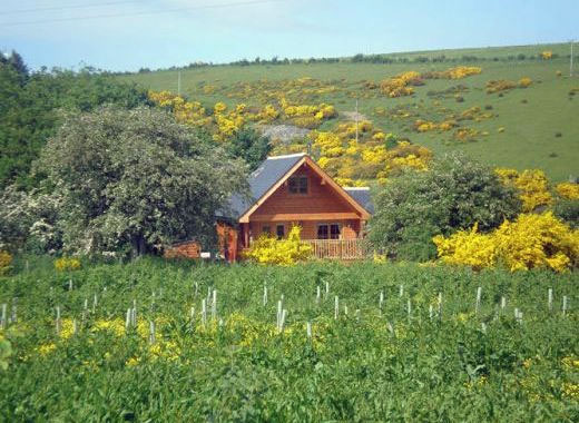 log cabins to rent north east Scotland