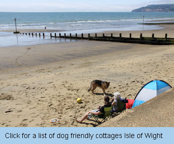Pet friendly uk holiday cottages for Small and friendly holidays