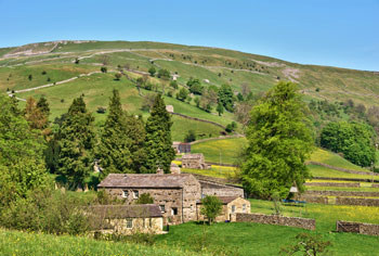 pet-freindly holiday cottages in yorkshire